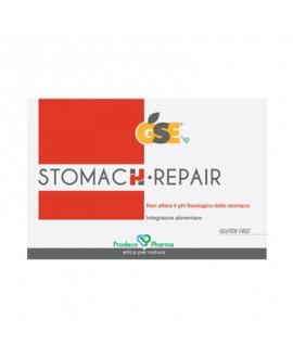 Gse Stomach Repair