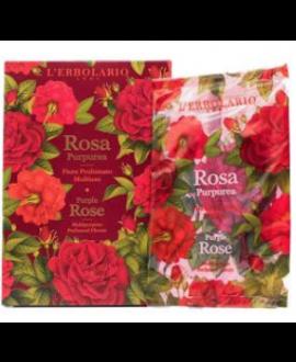 Rosa Purpurea Fiore Profumato